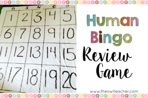 DIY Human Bingo Review Game