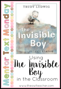 MTM:  The Invisible Boy