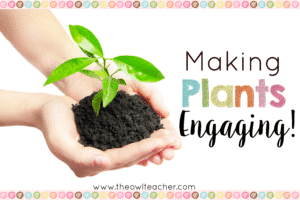 Making Plants Engaging