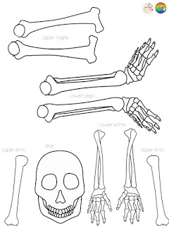 This fun and easy craft involves students writing their name in cursive to create the bones of a skeleton - perfect for halloween or any skeleton system unit!  This blog post explains how to create it and provides a free download of bone attachments!