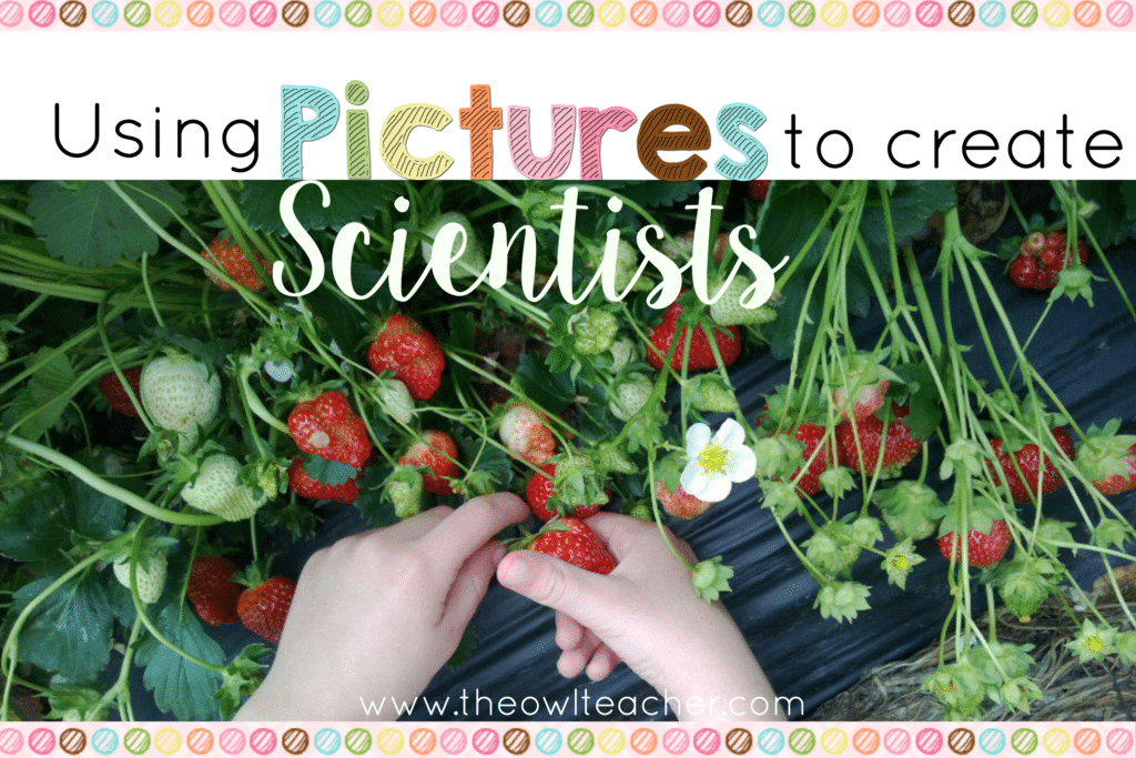 Using Pictures to Create Scientists – With a Freebie!