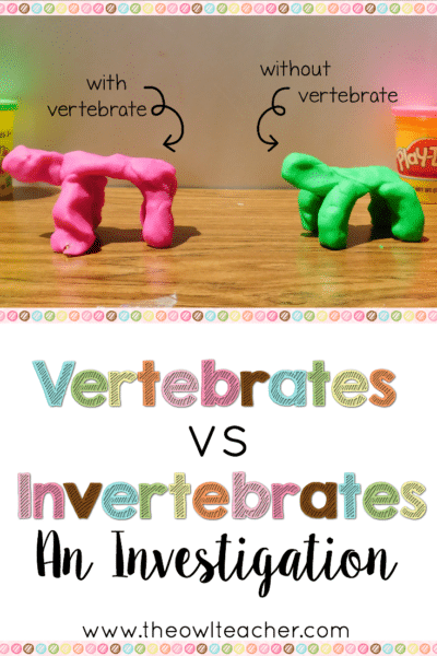 "Studying vertebrates and invertebrates makes for fun lessons for students - like this one, where kids get to make ""animals"" out of playdough and then stack wooden blocks on top! Read more about how to implement this lesson in this post."