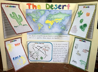 Engage your students with these 10 ecosystem project ideas for your elementary science class and grab a FREEBIE to get started!