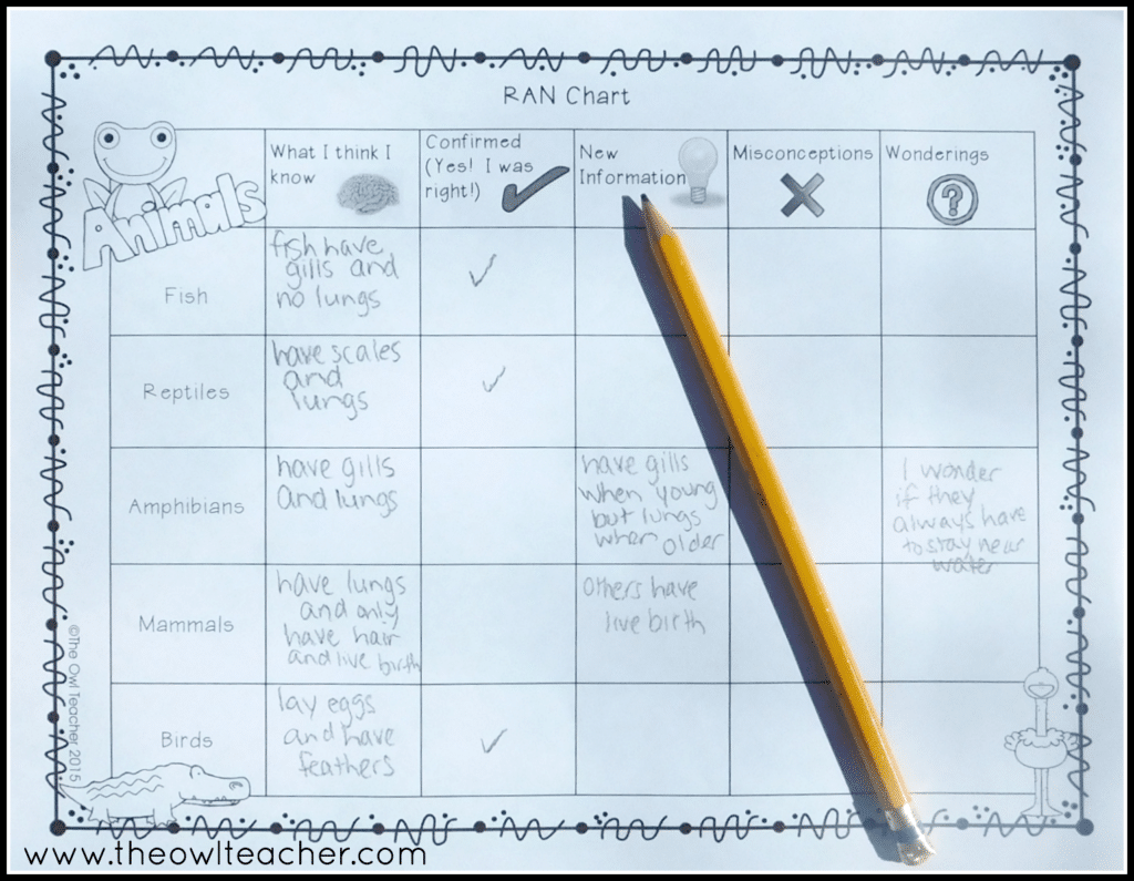 Workbooks vertebrates and invertebrates worksheets 5th grade : Vertebrate and Invertebrate Classification Unit - The Owl Teacher