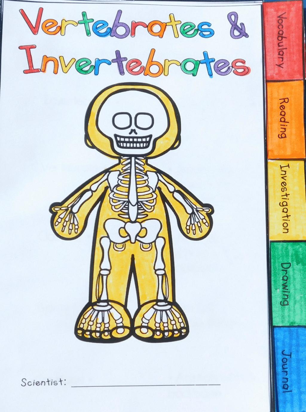 Workbooks vertebrates and invertebrates worksheets 5th grade : Vertebrates and Invertebrates: Animal Classification Tabbed ...